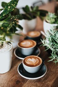 Image of 3 cups of coffee or lattes next to various potted herbs